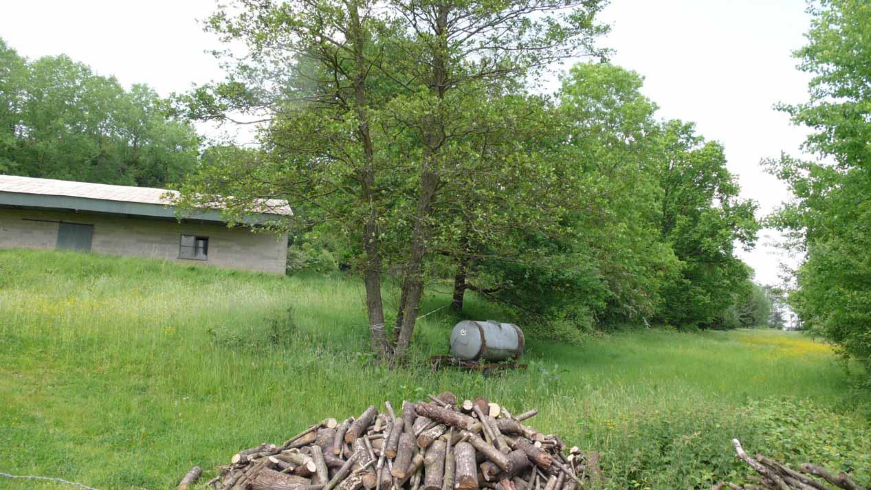 Ardennen goed ateliers huizen en onroerend goed in de for Vijver te koop ardennen